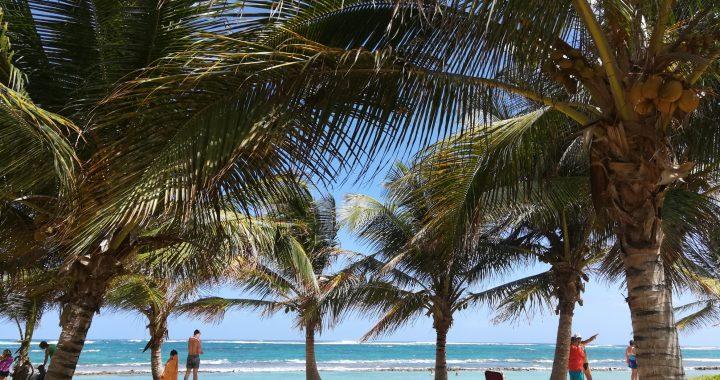 カリブ海に浮かぶ島グアドループ