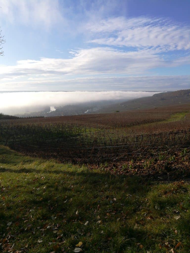 ドン・ペリニヨン(Dom Pérignon)の村オーヴィレールと葡萄畑