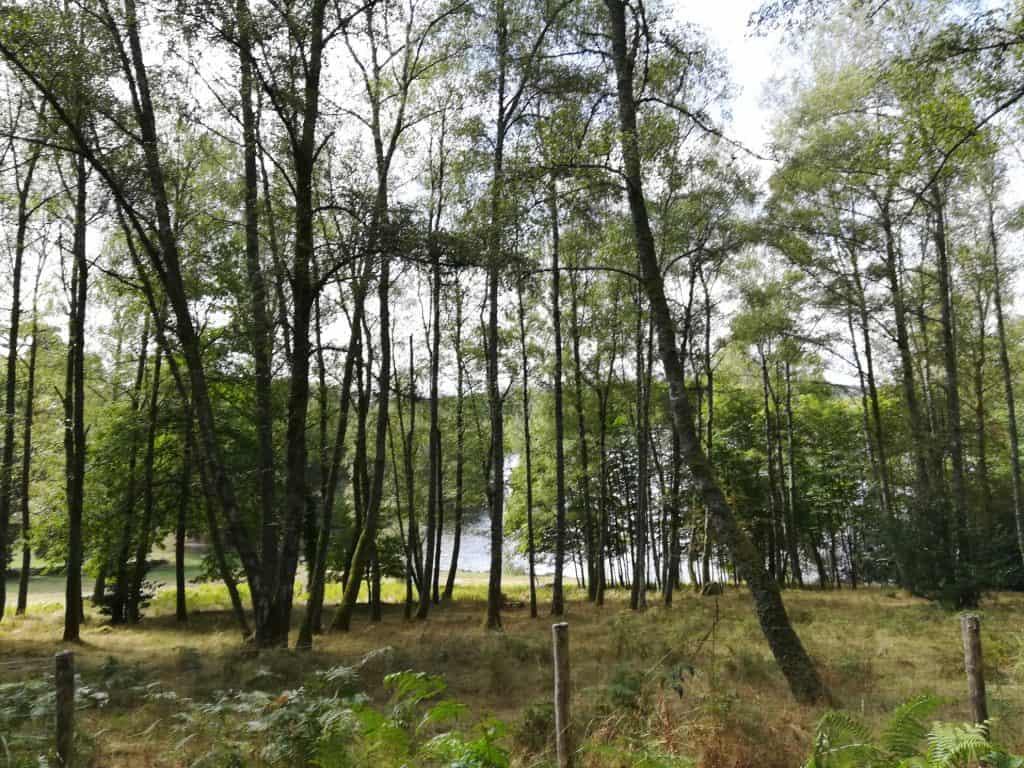 ヌベルアキテーヌの自然豊かなクルーズ県