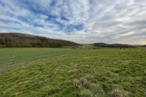 フランスの田舎冬景色